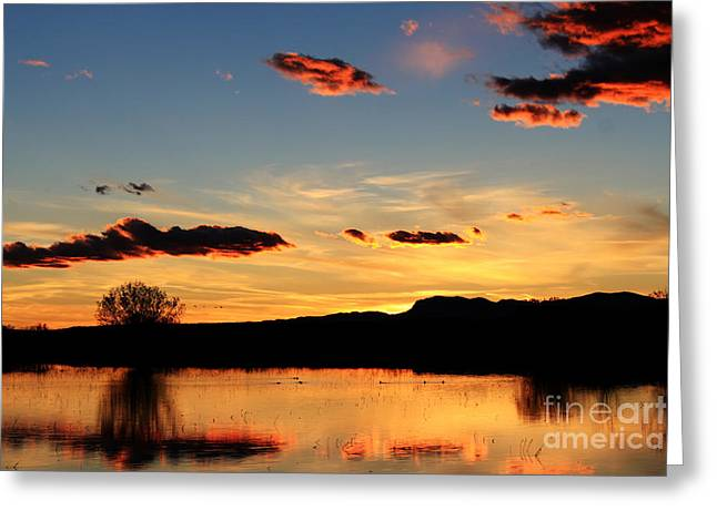 Marsh Sunset Greeting Card by Val Armstrong