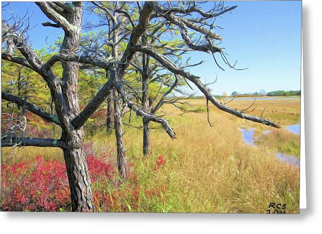 Marsh Trees Greeting Card by Richard Stevens