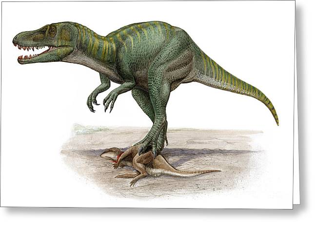 Marshosaurus Bicentesimus Greeting Card by Sergey Krasovskiy