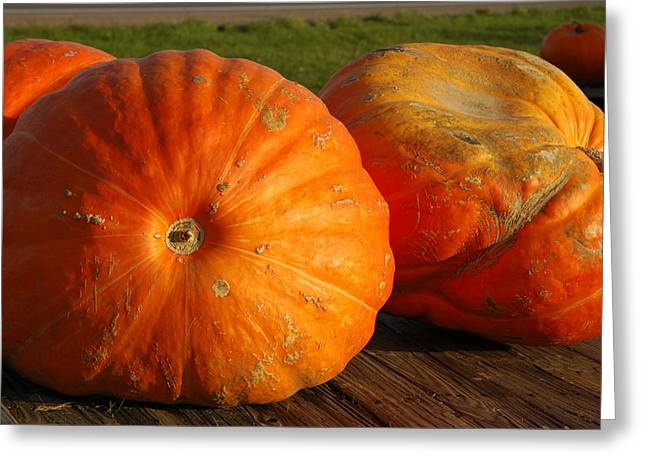 Mass Pumpkins Greeting Card by LeeAnn McLaneGoetz McLaneGoetzStudioLLCcom