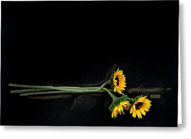 Master Sunflowers Greeting Card by J R Baldini M Photog