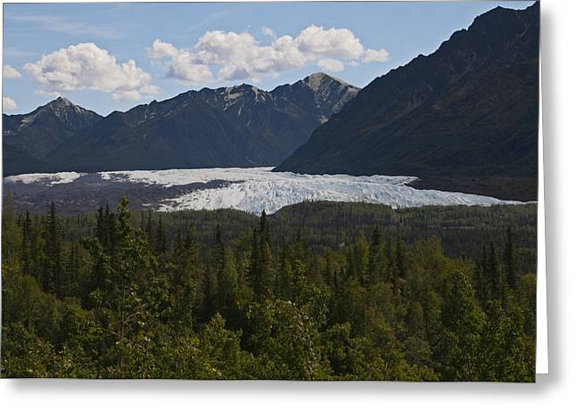 Matanuska Glacier Greeting Card by George Hawkins
