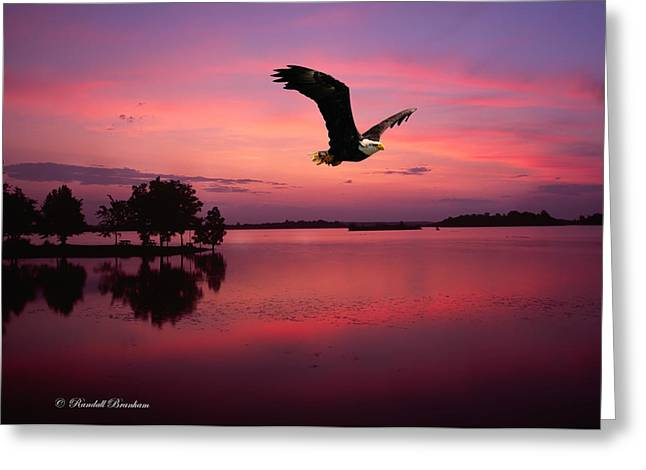 Greeting Card featuring the photograph Mauve Sundown Eagle  by Randall Branham