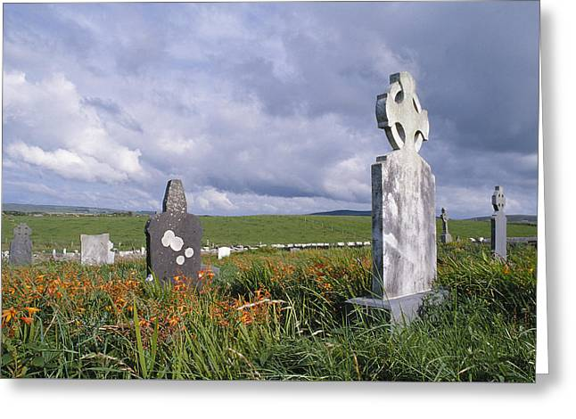 Mayo Cemetery Greeting Card