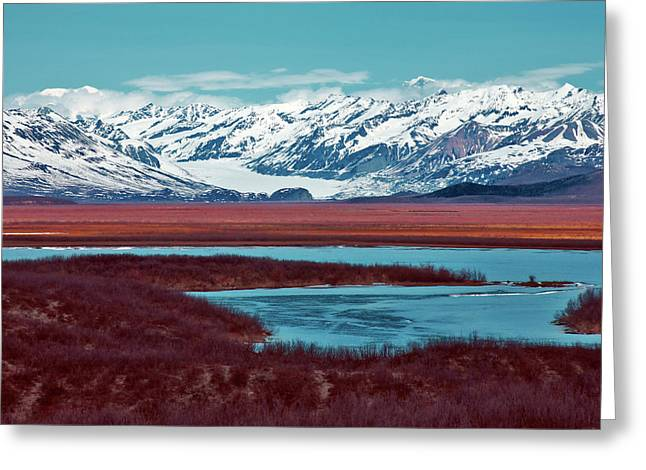 Mclaren Glacier Greeting Card by Rick Berk