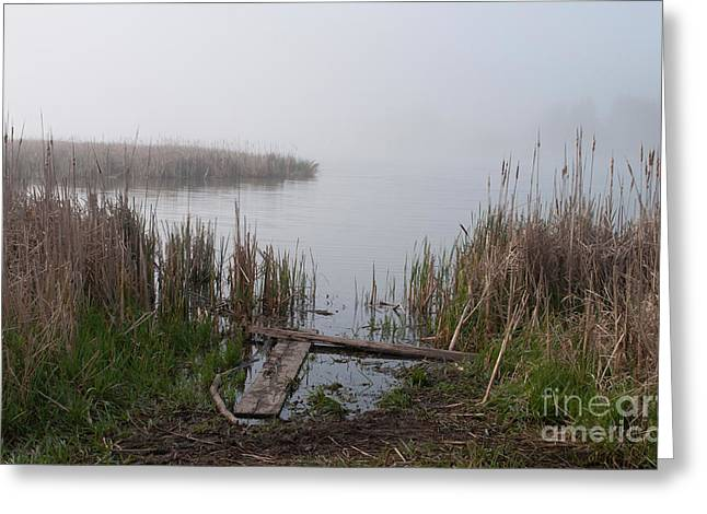Mclaughlin Bay In The Fog At The Shore Greeting Card by Gary Chapple