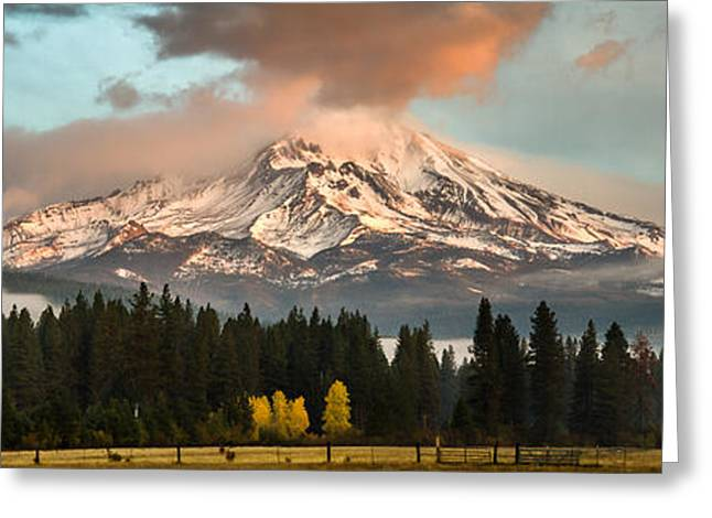 Greeting Card featuring the photograph Meadow Views by Randy Wood