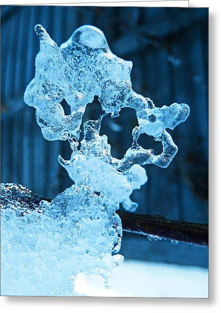 Greeting Card featuring the photograph Meet The Ice Sculpture by Steve Taylor