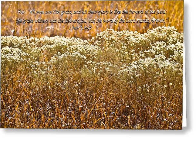 Men Are Like Grass Greeting Card by Carolyn Marshall