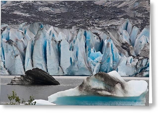 Mendenhall Glacier Juneau Alaska 1698 Greeting Card