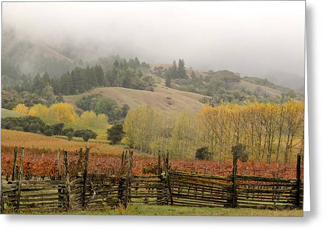 Mendocino In Autumn Greeting Card by Denice Breaux