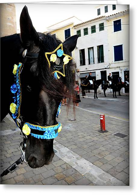 Greeting Card featuring the photograph Menorca Horse 1 by Pedro Cardona