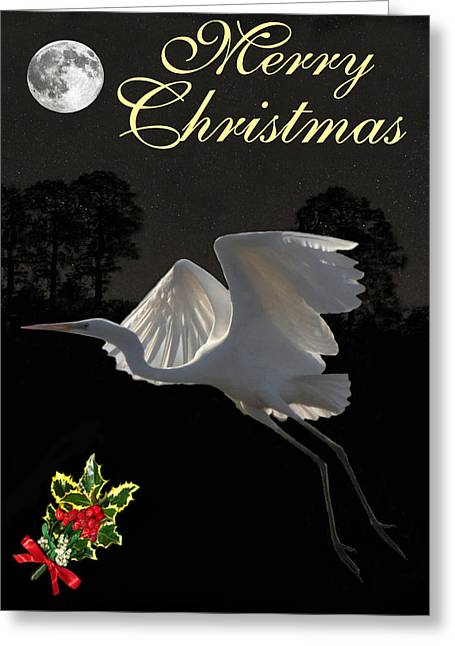 Merry Christmas Great Egret In Flight Greeting Card by Eric Kempson
