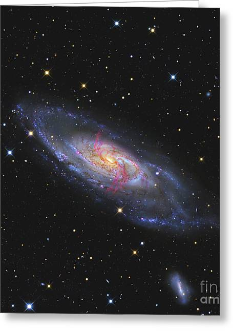 Messier 106, A Spiral Galaxy With An Greeting Card by R Jay GaBany