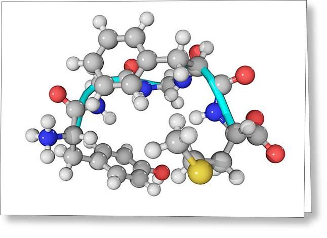 Met-enkephalin Molecule Greeting Card by Laguna Design