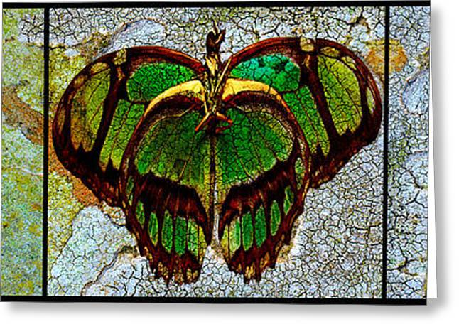 Metamorphic Muse Greeting Card by Fine Art  Photography