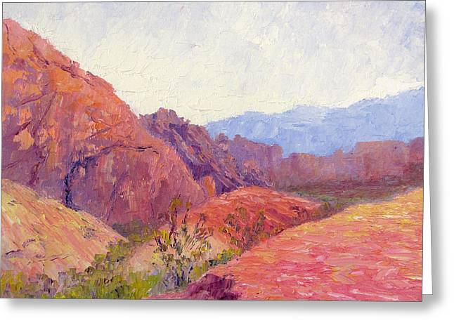 Mid Day Valley Of Fire Greeting Card by Terry  Chacon