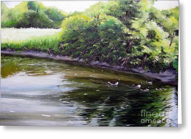 Mid Summer Day Canada Geese Greeting Card