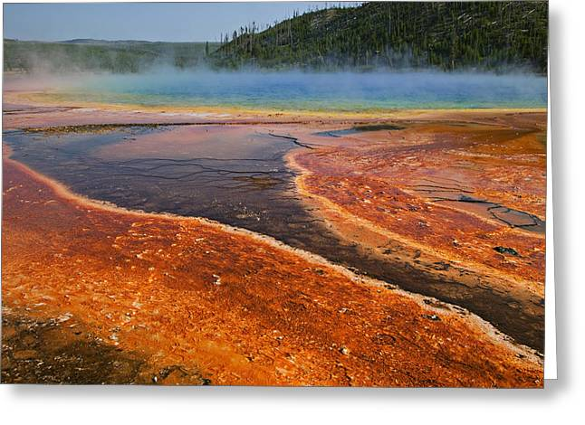 Middle Hot Springs Yellowstone Greeting Card