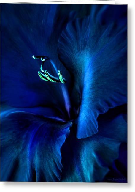 Midnight Blue Gladiola Flower Greeting Card by Jennie Marie Schell
