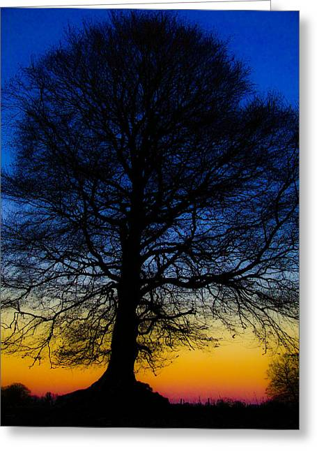 Midnight Calm Greeting Card by Rob Hemphill