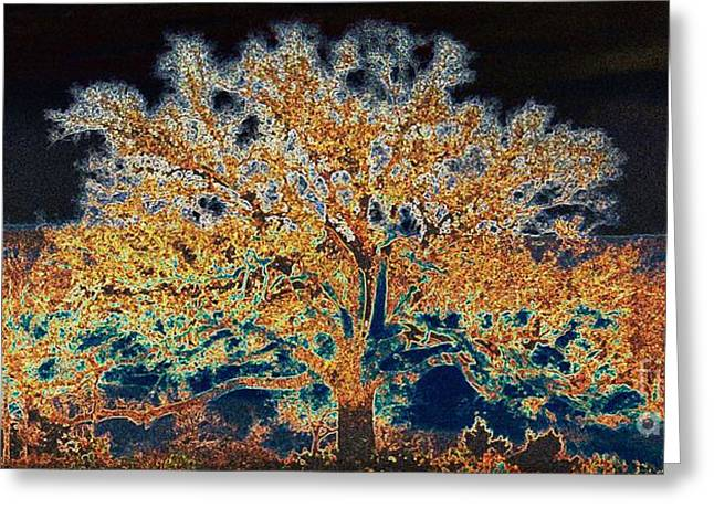Midnight Moonshine Greeting Card by David Carter