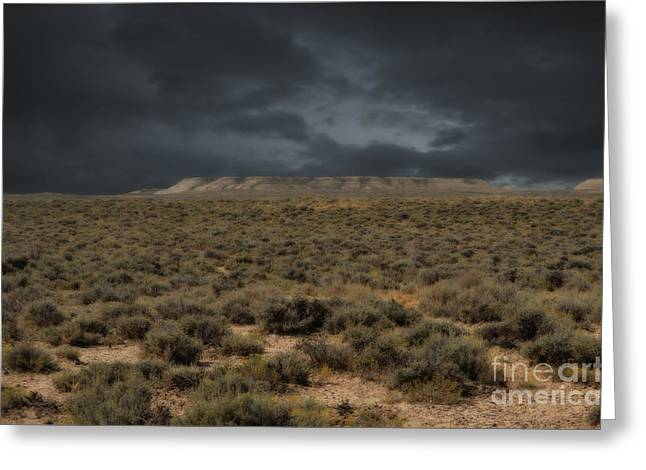 Midnight On The Pairie In Wyoming Greeting Card