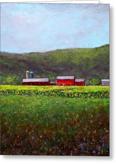 Midsummer In Pennsylvania Greeting Card by Bob Richey