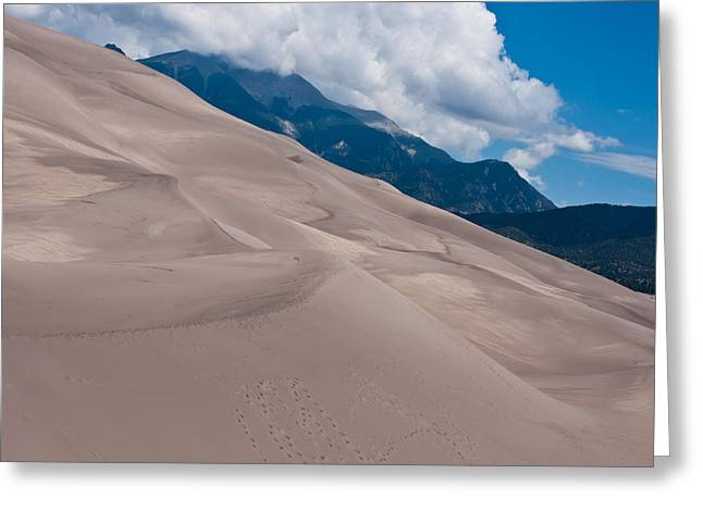 Miles Of Sand Greeting Card