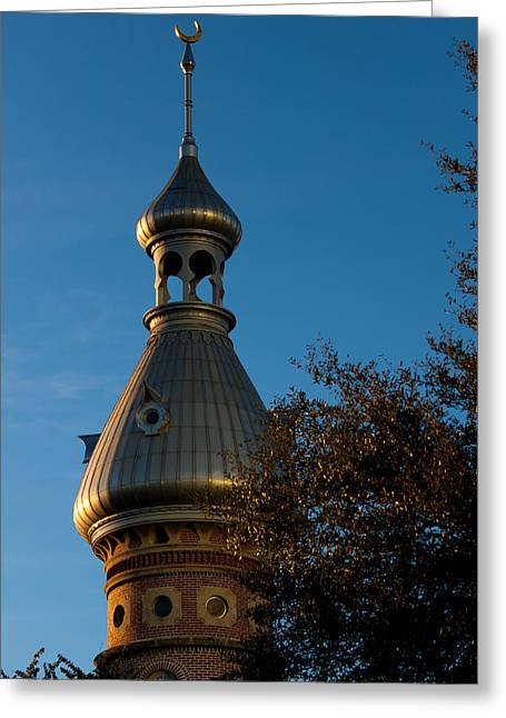Greeting Card featuring the photograph Minaret And Trees by Ed Gleichman