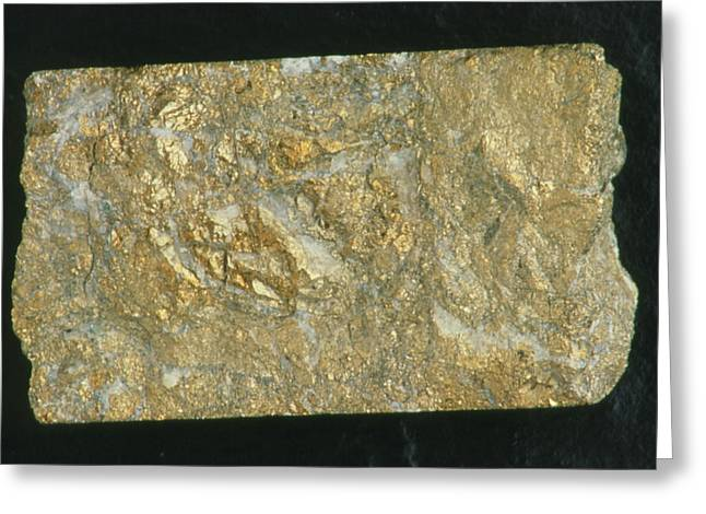Mining Drill Core Sample With Gold Content Greeting Card by Kaj R. Svensson