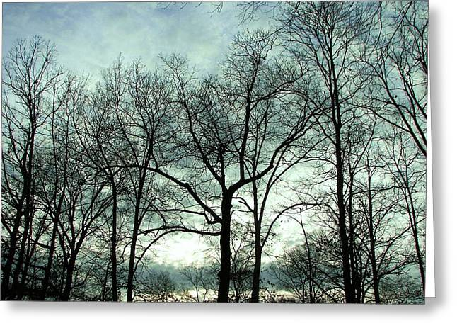Greeting Card featuring the photograph Mirage In The Clouds by Pamela Hyde Wilson