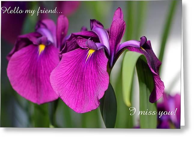 Miss You Greeting Card by Deborah  Crew-Johnson