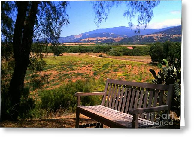 Mission Bench Greeting Card by Susan Waitkuweit