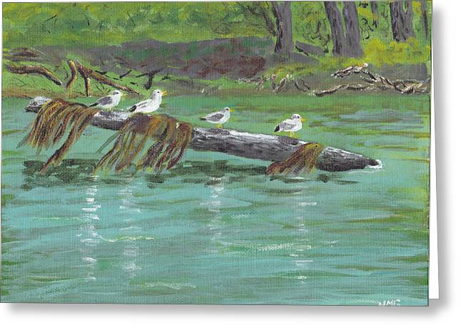Mississippi River Gulls Greeting Card by Nicole Grattan