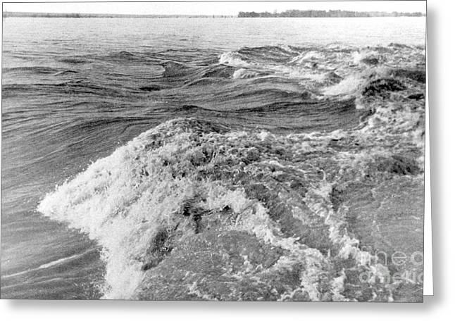 Mississippi River, Spring Flood, 1903 Greeting Card