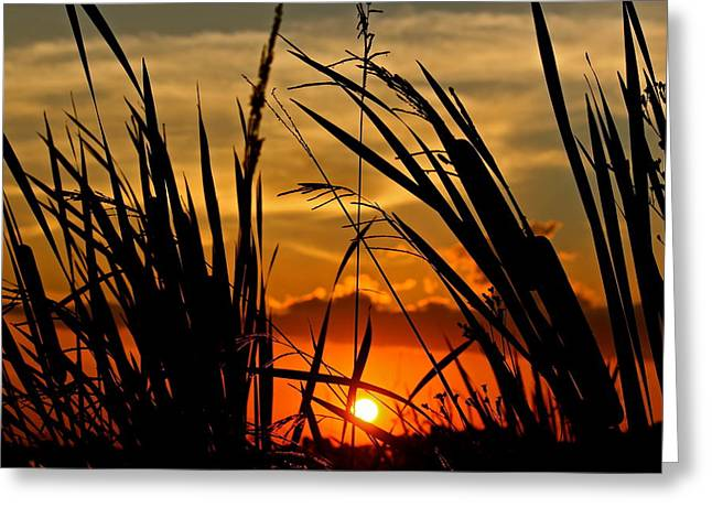 Greeting Card featuring the photograph Mississippi Sunset At The Ross Barnett Reservoir 2 by Jim Albritton