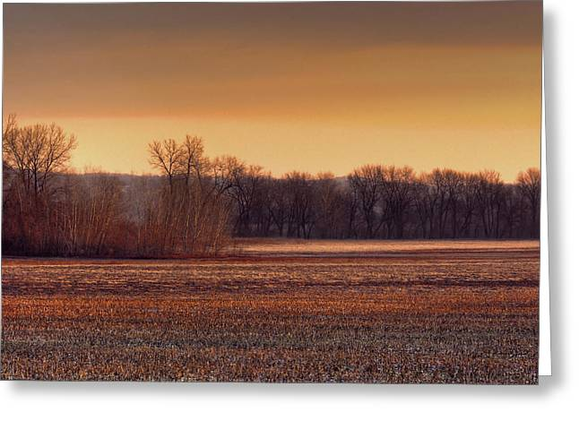 Missouri Bottoms Sweet Light Greeting Card by William Fields