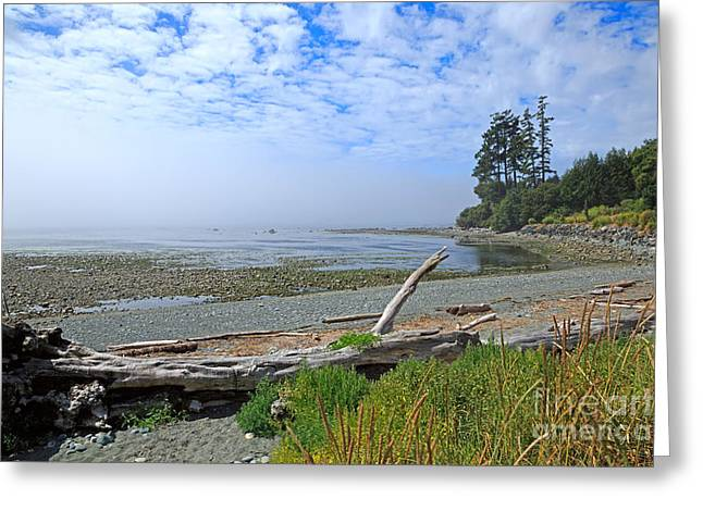 Mist On The West Coast Greeting Card by Louise Heusinkveld