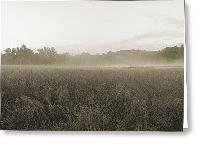 Misty Grounds Greeting Card by Jan W Faul