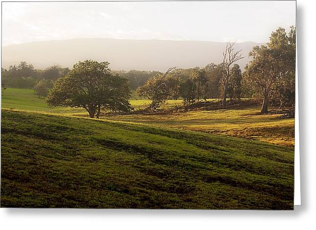 Greeting Card featuring the photograph Misty Maui Morning by Trever Miller