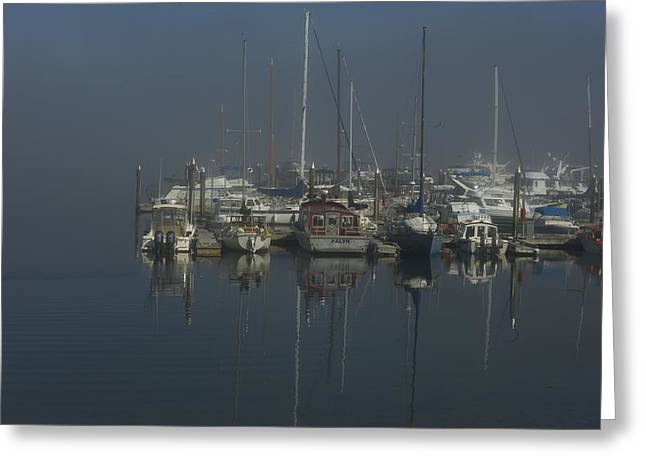 Misty Morning Greeting Card by Diane Smith