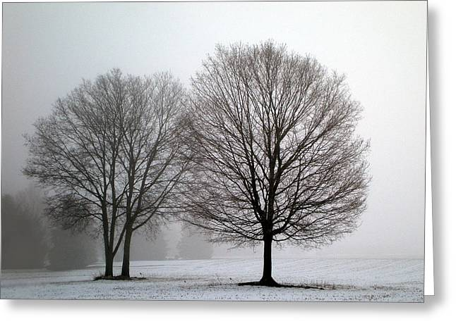 Misty Morning Greeting Card by Penny Hunt