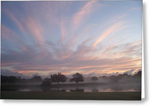 Misty Morning Sunrise Greeting Card by Sheila Silverstein