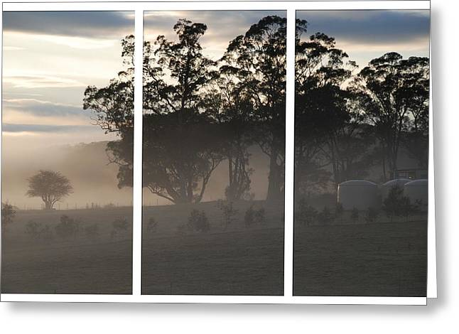 Misty Morning Triptych Greeting Card