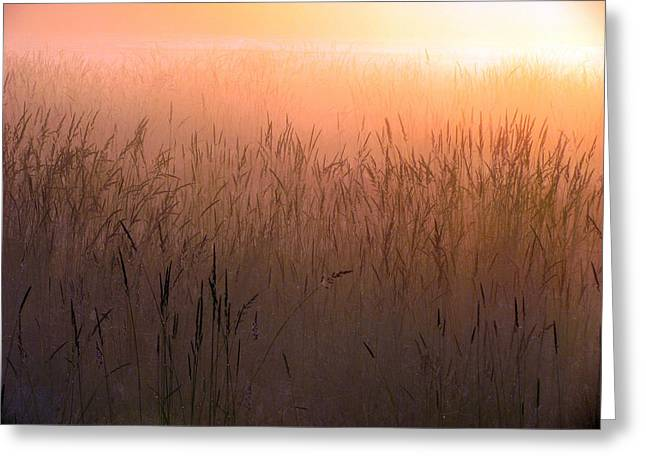 Misty Sunrise Greeting Card