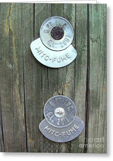 Greeting Card featuring the photograph Mitc Fume Tags On Light Pole by Renee Trenholm