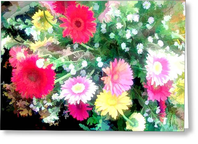 Mixed Asters Greeting Card by Elaine Plesser