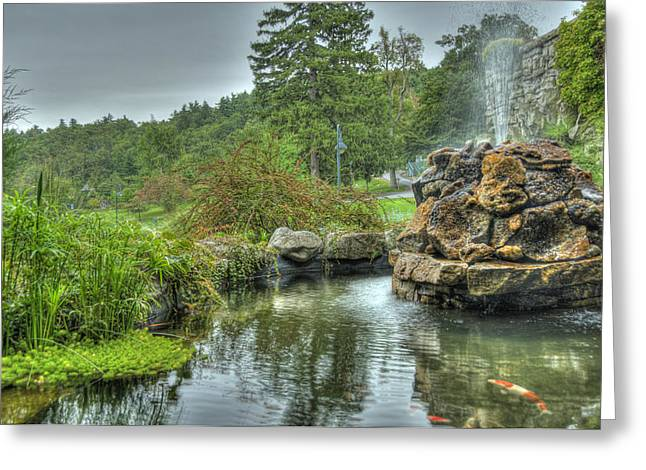 Mohonk Koi Pond On A Rainy Day Greeting Card by Donna Lee Blais