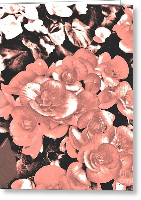 Monotone Beauty Greeting Card